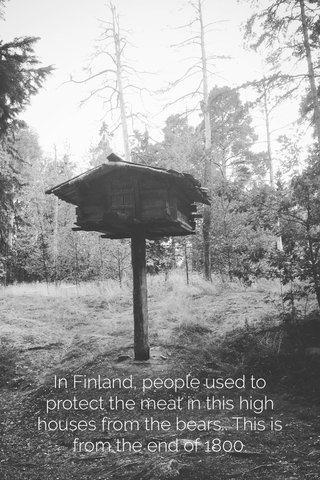 In Finland, people used to protect the meat in this high houses from the bears.. This is from the end of 1800.