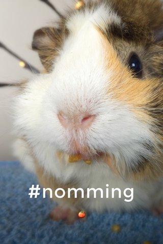 #nomming 🍅