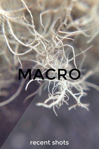 MACRO recent shots