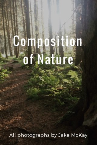 Composition of Nature All photographs by Jake McKay