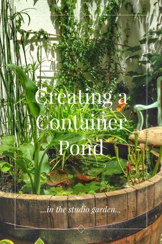 Creating a Container Pond ...in the studio garden...
