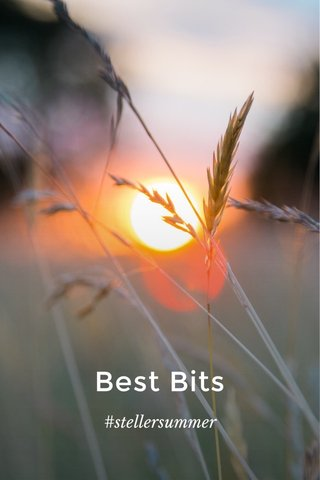 Best Bits #stellersummer