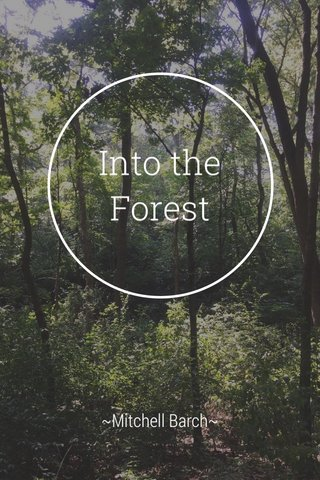 Into the Forest ~Mitchell Barch~