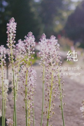純 Life is prettier, When it's simple.