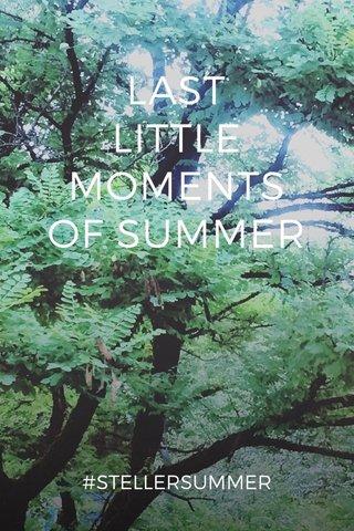 LAST LITTLE MOMENTS OF SUMMER #STELLERSUMMER