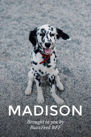 MADISON Brought to you by BuzzFeed BFF