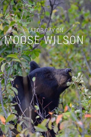 MOOSE WILSON LABOR DAY ON