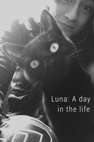 Luna: A day in the life