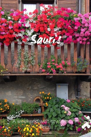 Sauris A weekend with my family in Friuli