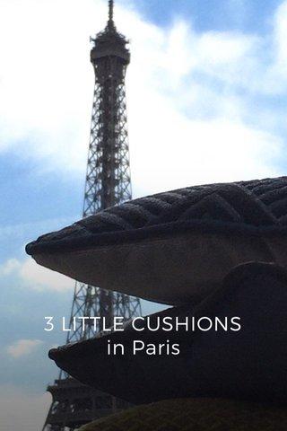 3 LITTLE CUSHIONS in Paris