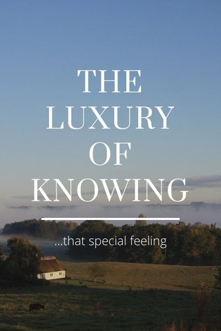 THE LUXURY OF KNOWING ...that special feeling