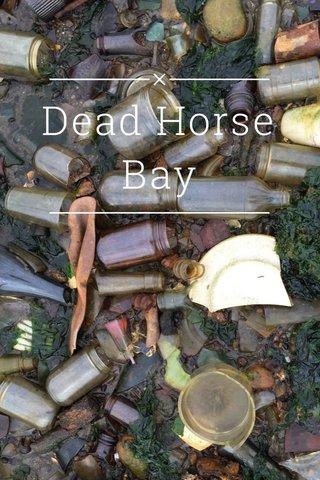 Dead Horse Bay