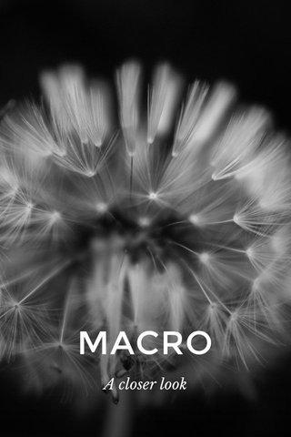 MACRO A closer look