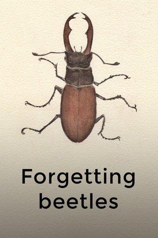 Forgetting beetles