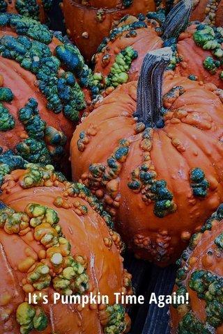 It's Pumpkin Time Again!