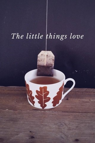 The little things love