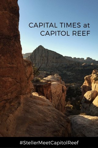 CAPITAL TIMES at CAPITOL REEF #StellerMeetCapitolReef