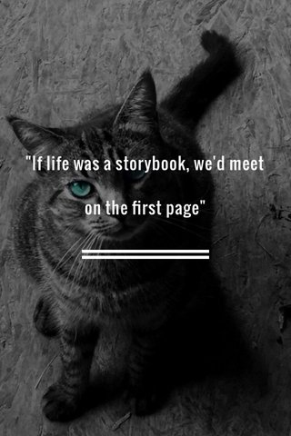 """""""If life was a storybook, we'd meet on the first page"""""""