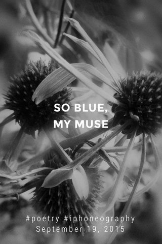 SO BLUE, MY MUSE #poetry #iphoneography September 19, 2015