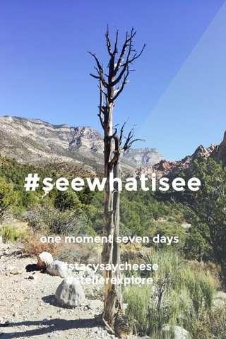 #seewhatisee one moment seven days #stacysaycheese #stellerexplore