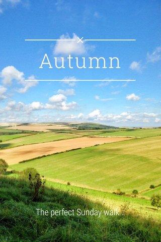 Autumn The perfect Sunday walk...