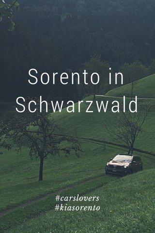 Sorento in Schwarzwald #carslovers #kiasorento