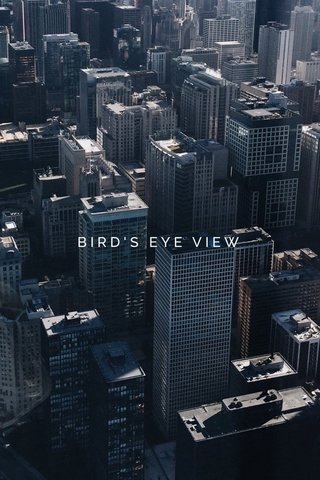 FROM THE SKY BIRD'S EYE VIEW