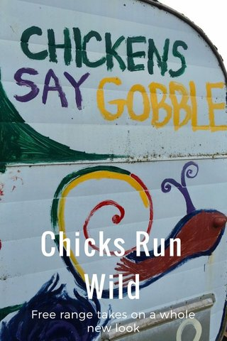 Chicks Run Wild Free range takes on a whole new look