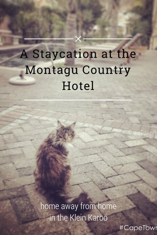 A Staycation at the Montagu Country Hotel home away from home in the Klein Karoo