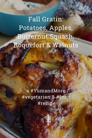 Fall Gratin: Potatoes, Apples, Butternut Squash, Roquefort & Walnuts a #YumandMore #vegetarian & #fruit #recipe