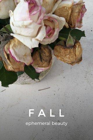 FALL ephemeral beauty