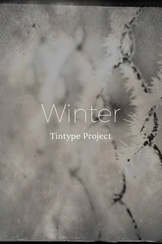Winter Tintype Project