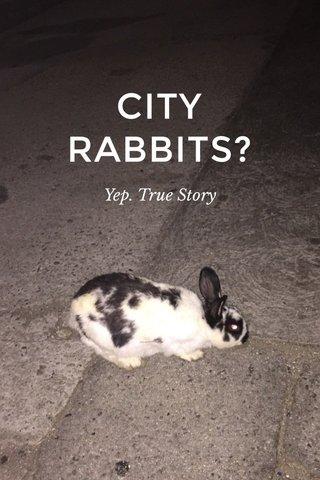 CITY RABBITS? Yep. True Story