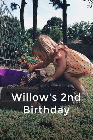 Willow's 2nd Birthday