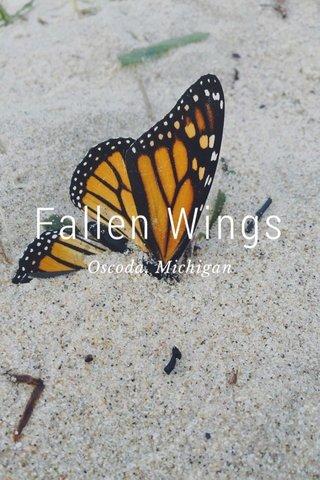 Fallen Wings Oscoda, Michigan