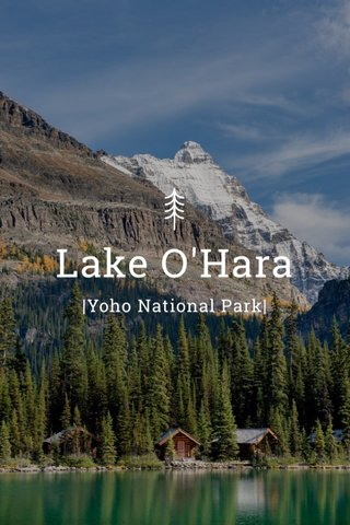 Lake O'Hara |Yoho National Park|
