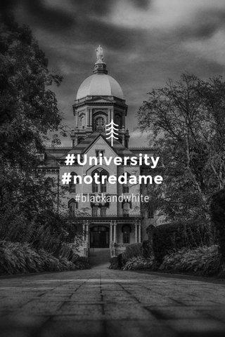 #University #notredame #blackandwhite