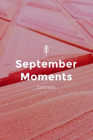 September Moments Contrasts