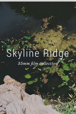 Skyline Ridge 35mm film collection