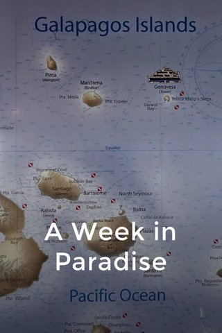 A Week in Paradise
