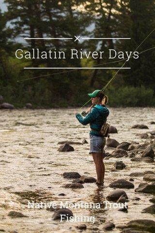 Gallatin River Days Native Montana Trout Fishing