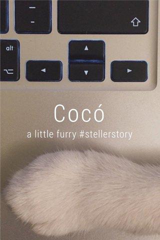 Cocó a little furry #stellerstory