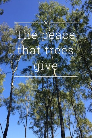 The peace that trees give