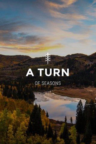 A TURN OF SEASONS
