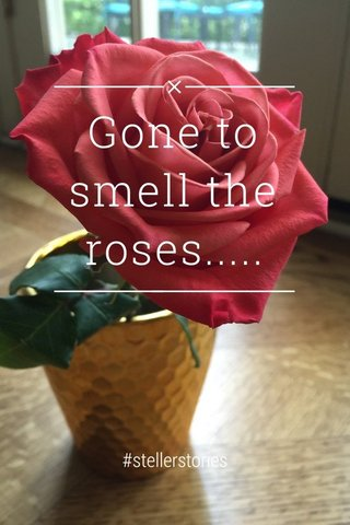 Gone to smell the roses..... #stellerstories
