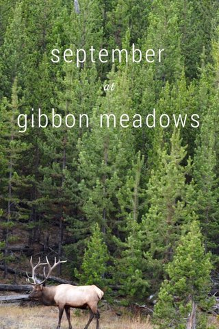 september gibbon meadows at