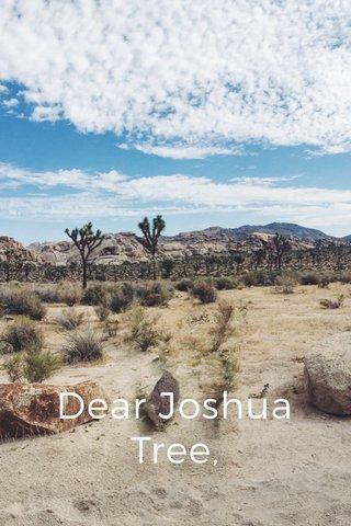 Dear Joshua Tree,