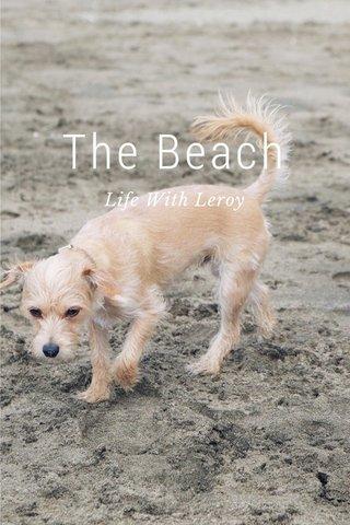 The Beach Life With Leroy