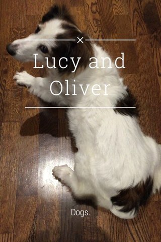 Lucy and Oliver Dogs.