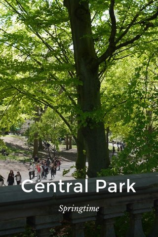 Central Park Springtime